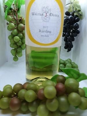 Weißwein 2017 Riesling-Trocken